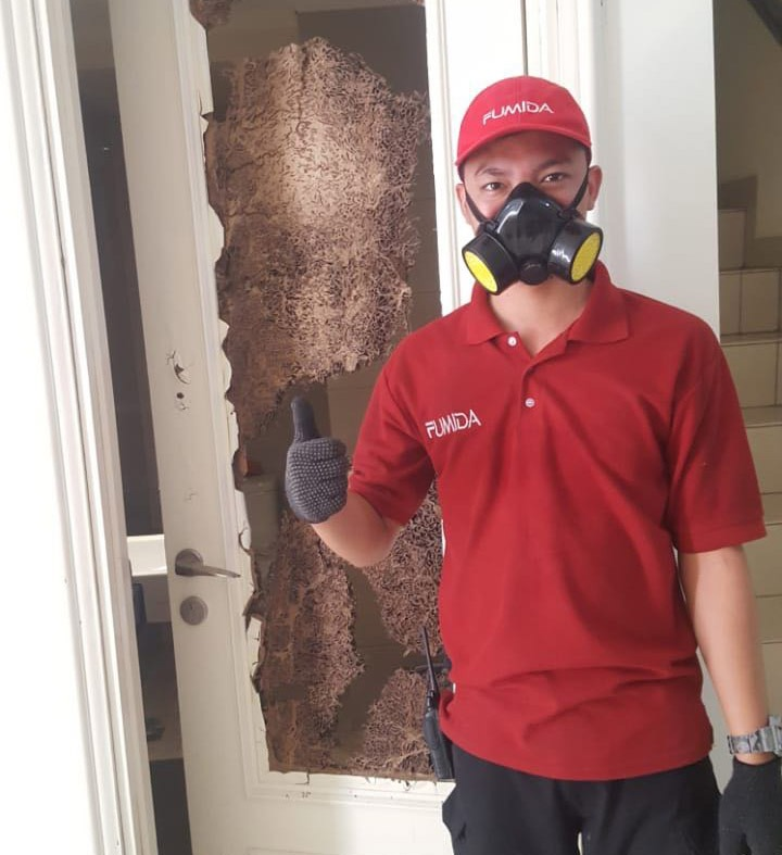 https://pestcontroljakarta.id/wp-content/uploads/2018/10/WhatsApp-Image-2018-09-05-at-12.19.24.jpeg